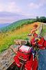 Cyclist near Hughes River Gap on Skyline Drive in Shenandoah National Park in Virginia - 9 - 72 dpi