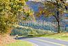Cyclist on Skyline Drive in Shenandoah National Park, Virginia-2169 - 72 dpi