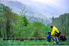Touring cyclist in Great Smoky Mountains National Park, nearing Newfound Gap - 6 - 72 ppi