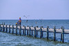 Touring cyclist on dock at Fairhope, Alabama, on Mobile Bay - 9-Edit-2 - 72 ppi