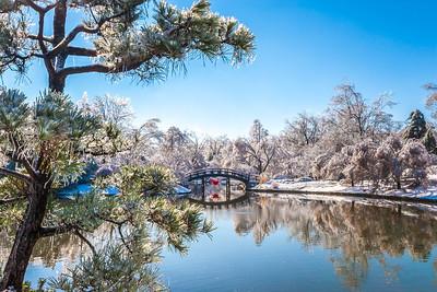 Ice storm - Missouri Botanical Garden - St  Louis-0220 - 72 ppi