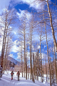 SN ut wstc 13 - ORps - Snowshoers in Utah's Wasatch Mountains, up Little Cottonwood Canyon near Salt Lake City - 72 ppi
