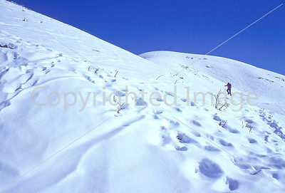 SN ut wstc 19 - ORps - Backpacker on snowshoes in Utah's Wasatch Mountains near Salt Lake City, Utah - 72 ppi