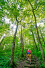 Hiker on way to 1864 battleground at Fort Pillow State Historic Area in Tennessee - 300 dpi - C2 -  -0258