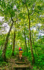 Hiker on way to 1864 battleground at Fort Pillow State Historic Area in Tennessee - 300 dpi - C2 -  -0250