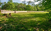 1864 Fort & battleground at Fort Pillow State Historic Area in Tennessee - 300 dpi - C2 -  -0222