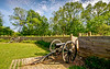 1864 Fort & battleground at Fort Pillow State Historic Area in Tennessee - 300 dpi - C2 -  -0233