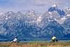 ACA bike tourers in Tetons Nat'l Park, Wyoming - 12 - 72 ppi