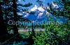 Mountain bikers along Teton Park Road in Grand Teton Nat'l Park - 10 - 72 ppi