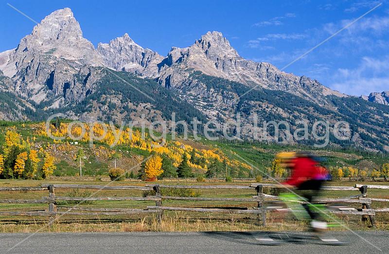 Mountain biker along Teton Park Road in Grand Teton Nat'l Park - 9 - 72 ppi