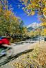 Mountain biker near Cottonwwod Creek & Climbers Ranch in Grand Teton Nat'l Park - 7 - 72 ppi