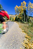 Biker on Gros Ventre Road Teton Nat'l Forest near Grand Teton Nat'l Park - rename 2 - 72 ppi