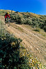 Mountain biker on steep hill leading to Gros Ventre River in Teton Nat'l Forest near Grand Teton Nat'l Park - 3 - 72 ppi