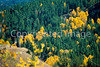 Mountain biker on descent from Gros Ventre Road to Gros Ventre River in Teton Nat'l Forest near Grand Teton Nat'l Park - 6 - 72 ppi