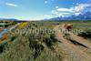 Biker on River Road along Snake River in Grand Teton NP - 23 - 72 ppi
