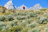 Mountain biker on south end of River Road along Snake River in Wyoming's Grand Teton NP - 2 - 72 ppi