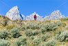 Mountain biker on south end of River Road along Snake River in Wyoming's Grand Teton NP - 4 - 72 ppi
