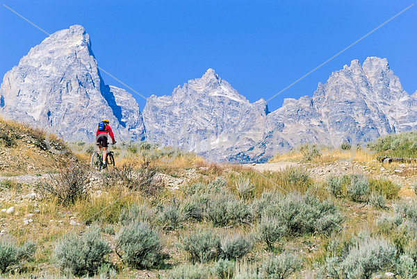 Tetons - Mountain biker on River Road in Grand Teton Nat'l Park, Wyoming