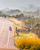 Southern Tier riders, Fort Davis to Alpine, Texas - C4-0279 - 72 ppi