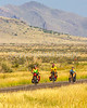 Southern Tier riders, Fort Davis to Alpine, Texas - C4-0349 - 72 ppi-4