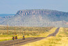 Southern Tier riders, Fort Davis to Alpine, Texas - C4-0348 - 72 ppi