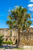 Texas - Mission San Jose, San Antonio Missions Nat'l Historical Park - C3-0116 - 72 ppi