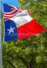 Texas & U S  flags - C3-0043 - 72 ppi