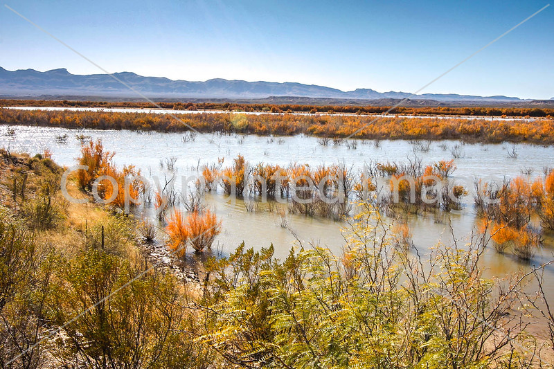 Texas - Rio Grande River near Old Fort Quitman - C8d-'08-2611 - 72 ppi