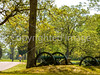 B tn shiloh - Day rider in Shiloh National Military Park in Tennessee 1 - 300 dpi - 72 ppi