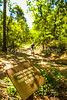 B al blakeley - Mountain biker on Appalachee Trail at Historic Blakeley State Park near Mobile, Alabama - day20016 -  72 ppi