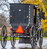 Amish buggy in Mesopotamia, Ohio -0339 - 72 ppi-2