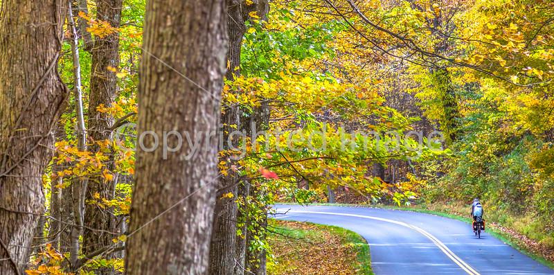 TransAm & Bike Route 76 riders on Blue Ridge Parkway, VA - C3-0445 - 72 ppi-2