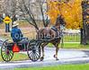 Amish buggy in Mesopotamia, Ohio -0334 - 72 ppi-3