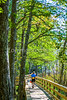 B al blakeley - Bicyclist on boardwalk at Historic Blakeley State Park near Mobile, Alabama - day20142 -72 ppi