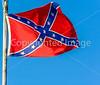 M flag confederate - d4__0161 - 300 dpi - flipped - 72 ppi