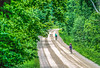 Vermont - Cyclist(s) in Green Mountains, Danby & Manchester region - 8-Edit - 72 ppi