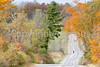Green Mountains Loop - New York side  - -0092 - 72 dpi