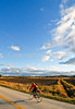 Biker on SR118 near Berkshire in northwest Vermont-C2--0461 - 72 ppi