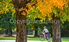 Vermont - Lake Champlain - D4-C2-0300 - 300 ppi-2 - 72 ppi