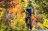Vermont - Lake Champlain - D5-C2-0270 - 300 ppi-3 - 72 ppi