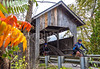 Vermont - Lake Champlain - D6-C1-0074 - 300 ppi-2 - 72 ppi