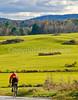 Biker on Confederate bank robbers' trail north of Enosburg Falls, VT-0312 - 72 ppi
