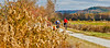 Cyclist(s) on Vermont's Missisquoi Valley Rail Trail - 3 -0040 - 72 ppi