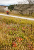 Cyclist on Missisquoi Valley Rail Trail west of Enosburg Falls, Vermont-C2--0248 - 72 ppi