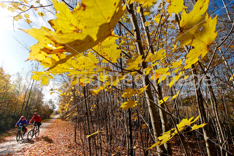 Cyclist(s) on Vermont's Missisquoi Valley Rail Trail - 2 -0237 - 72 ppi