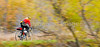 Cyclist at St  Albans Bay State Park, Vermont  - C1 - -0045 - 72 ppi