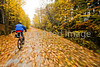 Cyclist(s) on Vermont's Missisquoi Valley Rail Trail - 2 -0420 - 72 ppi