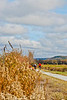 Cyclist(s) on Vermont's Missisquoi Valley Rail Trail - 3 -0040 - 72 ppi-2