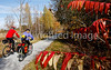Cyclist(s) on Vermont's Missisquoi Valley Rail Trail-0209 - 72 ppi