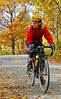 Cyclist at Kill Kare State Park on St  Albans Bay, Vermont-0207 - 72 ppi
